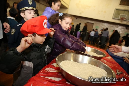 Photos: Shushan Purim Carnival in Oholei Torah