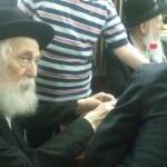 Boruch Dayan Hoemes: Rabbi Moshe Greenberg OBM