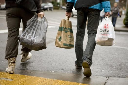 paper-or-plastic-bags