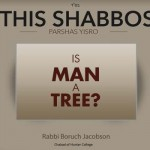 Shabbos at the Besht: Is Man a Tree?
