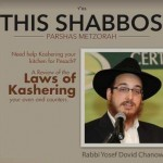 Shabbos at the Besht: The Laws of Kashering