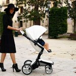 Halachic Analysis: Having a Goy Push Your Stroller on Shabbos