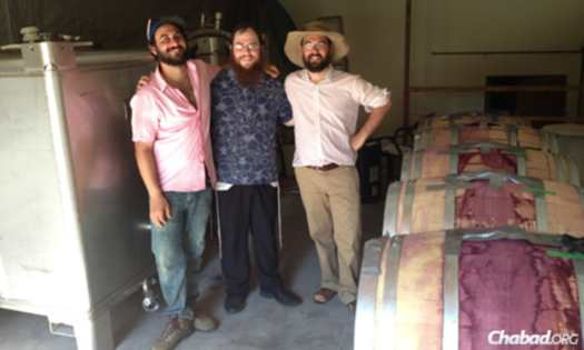 Ari, left, and Ezra Cipes, right, supervised the making of the wine in the Cipes' family garage, which happens to be the original Summerhill wine cellar. Hecht is in the middle.