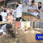 Video: Moshe Attends Kosher Day