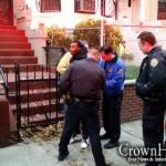 Vigilant Bystanders Deliver Mugger to Hands of Justice