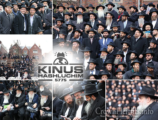 kinus-group-faces-lead
