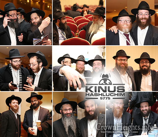 kinus-sessions-greet-lead