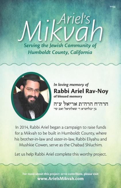 Ariel's-Mikvah-1