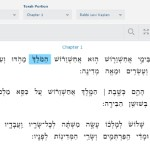 Virtual Megillah Trainer Hits the Web