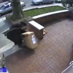 Video: Father and Son Steal Package off Crown Heights Porch