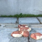 Hundreds Rally After Pork Dumped at Holocaust Memorial