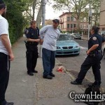 Shoplifter Apprehended by Shomrim after Kingston Av. Theft