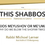 Shabbos at the Besht: Why Do We Blow the Shofar Twice?