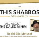 Shabbos at the Besht: All About the Daled Minim