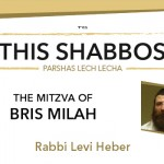Shabbos at the Besht: The Mitzvah of Bris Milah
