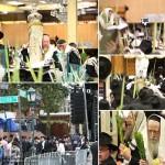 Photo Gallery: Chol Hamoed Sukkos in 770