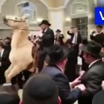 Video: Horsing Around at a Chassunah