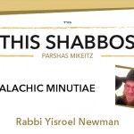 Shabbos at the Besht: Halachic Minutiae