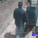 Video: Thief Steals Package and Garbage Bin