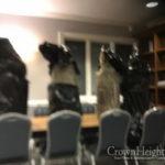 Stolen Torahs Found and Returned to Flatbush Shul