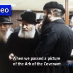 Living Torah Sneak Peek