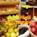 Photos: Shechiyanu Fruits for Tu B'shvat