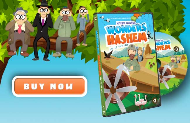 wonders-of-hashem-3