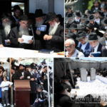 Photos: 'Pan Kloli' is Read at the Ohel