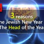 Video: 3 Reasons Why It's the 'Head' of the Year