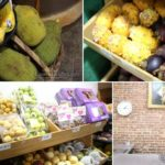 Photos: Exotic Fruits for the New Year