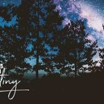 Developing Our Destiny: Be a Redeemer