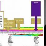 Advanced Halacha Course Partnership with BML