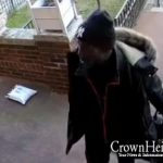 Caught on Camera: Package Thief Strikes Again