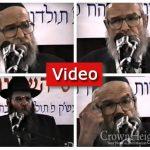 RebbeDrive: Kinus Hashluchim, 5751, Rabbi Moshe Yitzchok Hecht