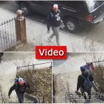 Caught On Camera: Porch Thief, At it Again
