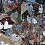 After Hate Crime, People of Flagstaff Show their Hearts