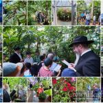Moscow's Chevra Tehillim Recite Blessing on the Trees at Botanical Gardens