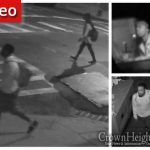 Car Break-In Caught on Camera in Crown Heights