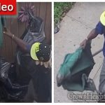 Another Bizarre Theft in Crown Heights, Thief Makes Off With Umbrella