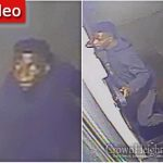 SHOMRIM ALERT: Be Alert For The This Individual Breaking Into Homes in Crown Heights