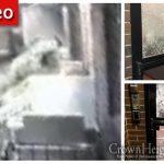 Door Breaking Package Thief Strikes Again
