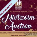 N'Shei's Second Annual Mivtzoim Auction
