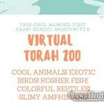 Chol Hamoed Trip: Virtual Torah Zoo