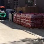 PSA: Food Distribution In Crown Heights