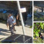 Arrest In Crown Heights Sparks False Rumors Of Social Distancing Crackdown