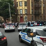 Car Thieving Duo Busted In Crown Heights