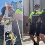 Man Accused of Punching NYPD Chief, Cops on Brooklyn Bridge Released Without Bail