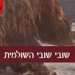 """Shuvi"" A New Single From Zalman Pollack"