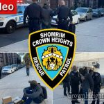 Package Thief Caught Red Handed and Apprehended in Crown Heights