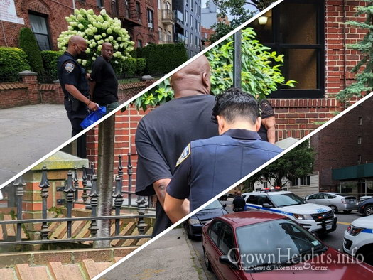 SHOMRIM: Marketplace Shoplifter Stopped and Arrested